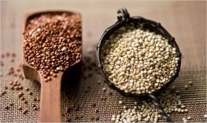 quinoa_topic600 (1)