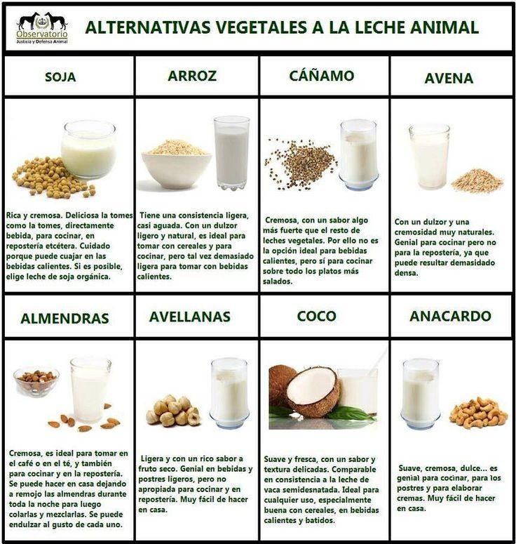 tipos_De_leche_vegetal